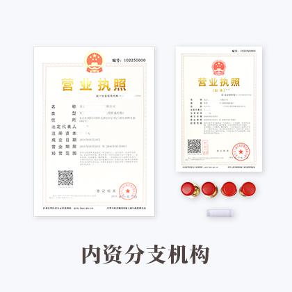 内资分支机构注册(默认)
