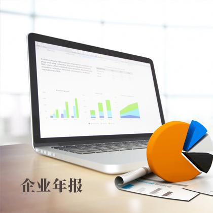 企业年报(内资有限公司)