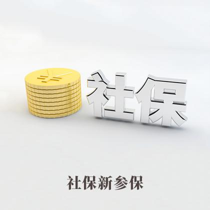 社保新参保(首人参保)