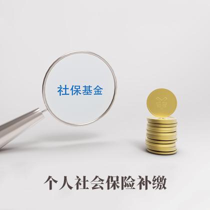 个人社会保险补缴(一个月)
